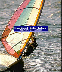 download Windsurfing Screensaver by SD