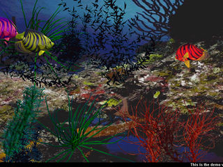 download 3D Angel Fish Screensaver