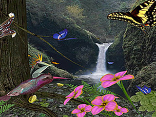download 3D Butterflies Screensaver