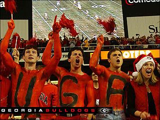 download Georgia Bulldogs Screensaver