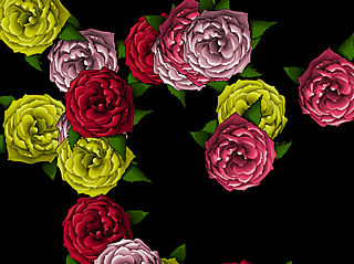 download Roses S Screensaver