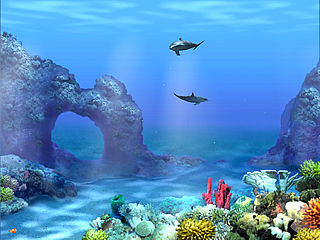 download Living 3D Dolphin Screensaver