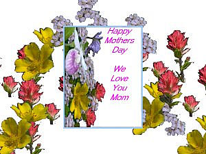download Mother's Day Flowers v03 Screensaver
