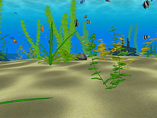 download 3D Water Life v2.4  Screensaver