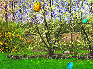 download Easter (3D Floating Easter Eggs) Screensaver
