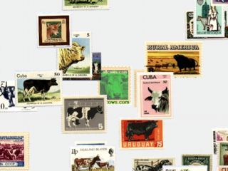 download Cow Stamps Screensaver