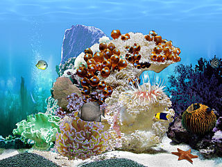 download Amazing 3D Aquarium by Elefun