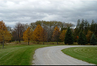 download Autumn In Ontario v1 Screensaver