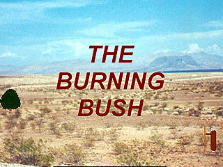 download The Burning Bush v103 Screensaver