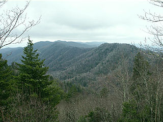 download Smokies Vistas And Overlooks v1.0 Screensaver