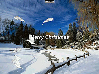 download Christmas Doves Screensaver