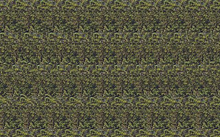 download Stereogram Screensaver