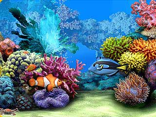 download Living Marine Aquarium 2 Screensaver