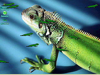 download Iguana Screensaver