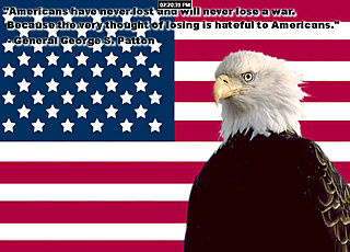 download Patriot Eagle Screensaver