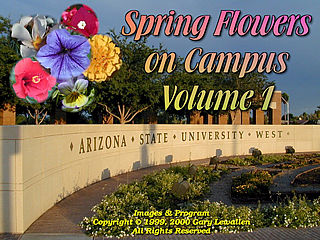 download Spring Flowers On Campus v1 Screensaver