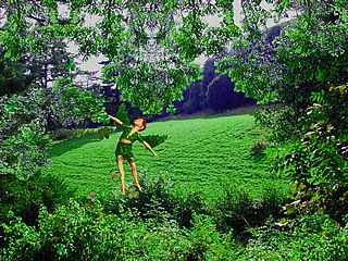 download St. Patrick's Day (3D Shamrock Fairy) Screensaver